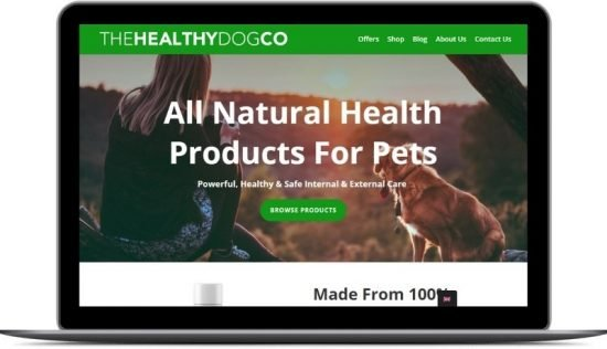 Case Studies FSM The Healthy Dog Co
