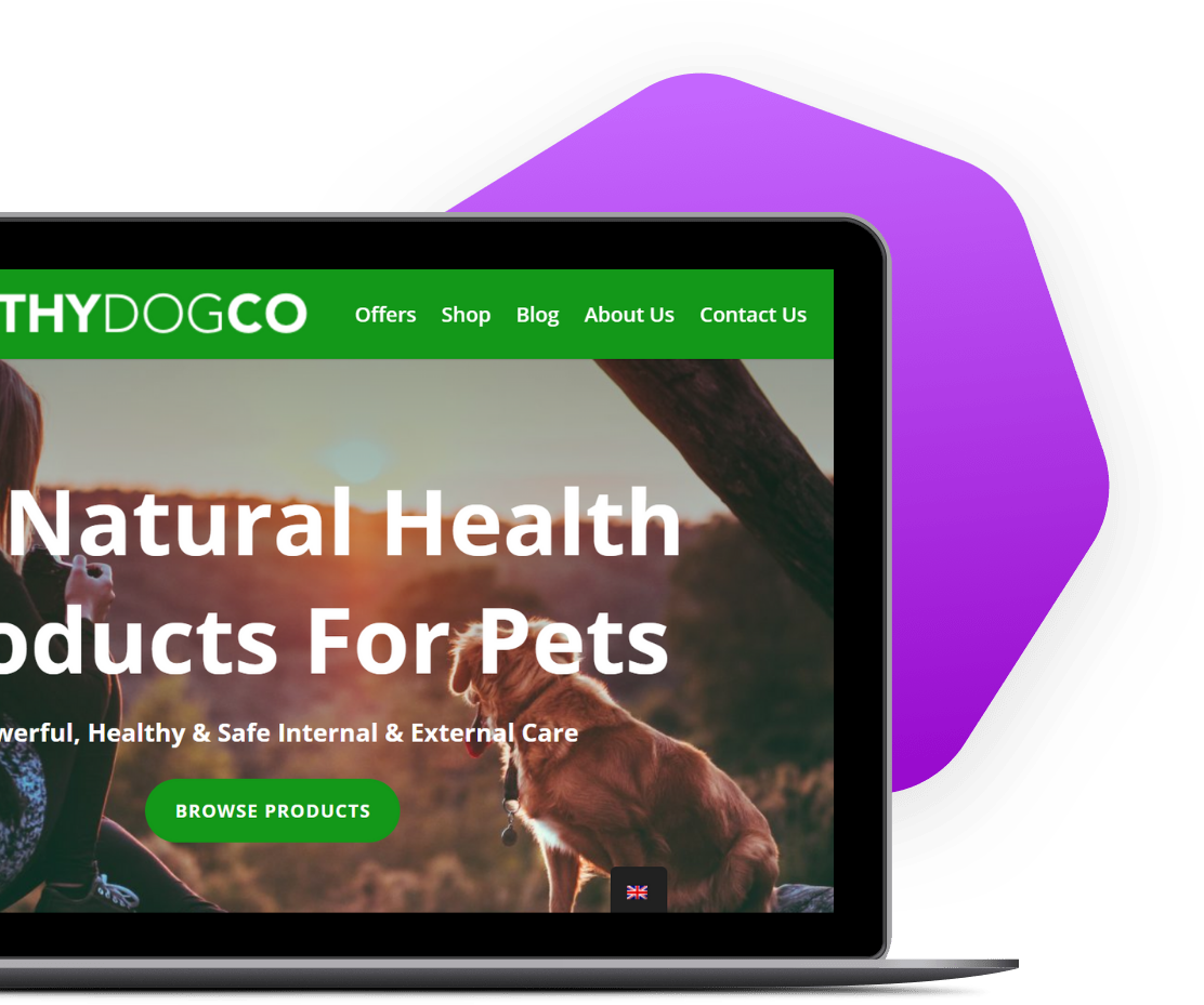 The Healthy Dog Co Case Study with Future State Media